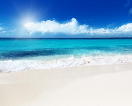 ocean view: ocean and perfect sky