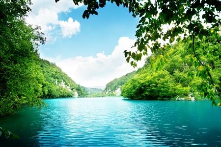 깊은 숲에서 호수 스톡 콘텐츠 - 8731009