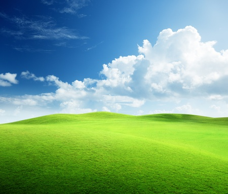 field of grass and perfect sky Stock Photo - 9430519