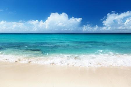beach on Catalina island Dominican republic Stock Photo - 9496586