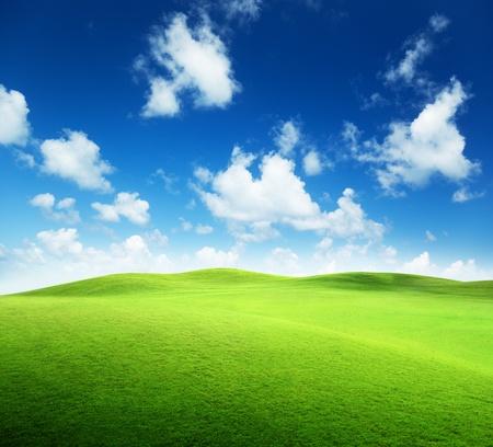 Campo de césped y cielo perfecto Foto de archivo - 9496584