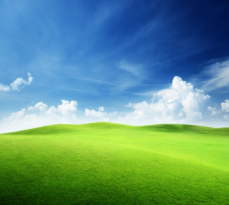 field of grass and perfect sky Stock Photo - 9496582