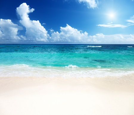 sand of beach caribbean sea photo