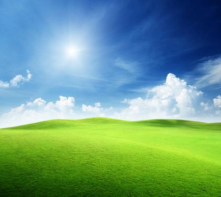 dia soleado: campo de césped y cielo perfecto
