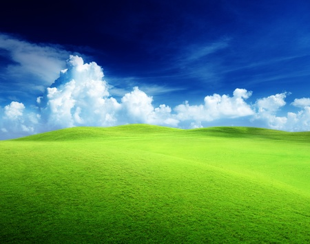 field of grass and perfect sky Stock Photo - 9641786