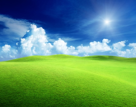 field of grass and perfect sky Stock Photo - 9741781