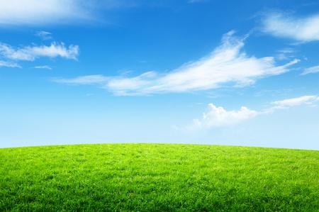 Campo di erba e il cielo perfetto Archivio Fotografico - 10439364