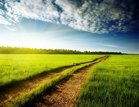 terrain route et le coucher du soleil