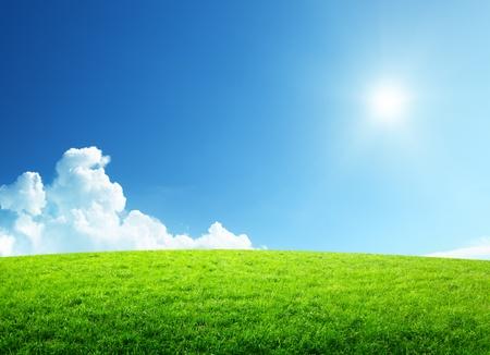 dia soleado: campo de hierba y cielo perfecto Foto de archivo