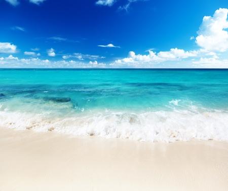 catalina: spiaggia dell'isola Catalina Repubblica Dominicana Archivio Fotografico