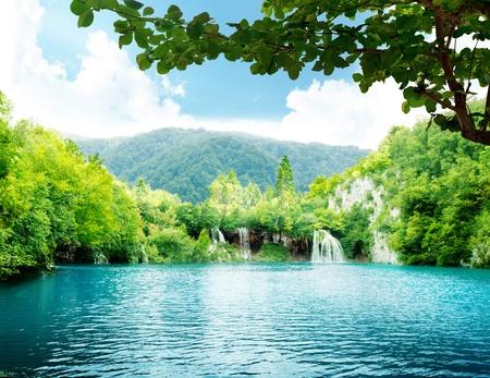 lagos: lago en el bosque profundo