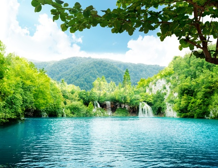 meer in diepe woud Stockfoto