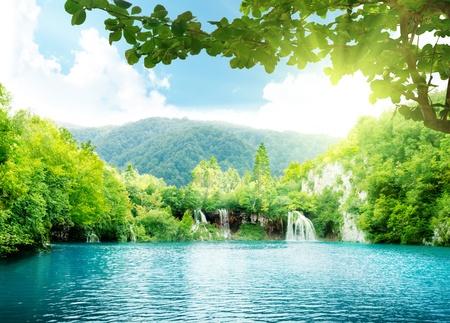 lake in deep forest Фото со стока