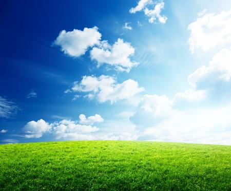 herbe ciel: herbe et le coucher du soleil