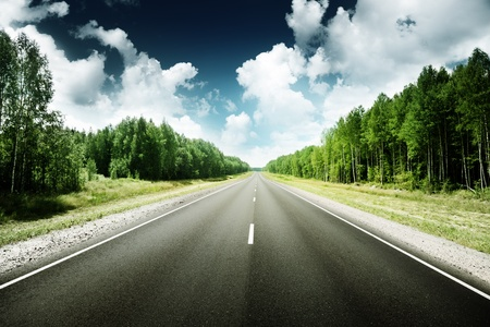 road in Russian forest Stock Photo - 13546536