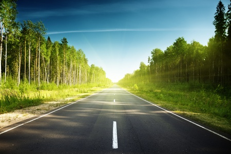 road in Russian forest Stock Photo - 13546505
