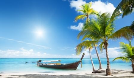 wood boat on the beach Standard-Bild
