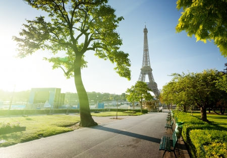 sunny morning and Eiffel Tower, Paris, France  photo