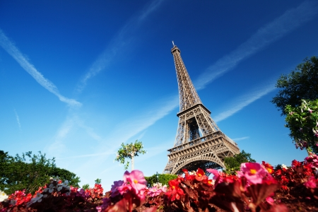 sunny morning and Eiffel Tower, Paris, France  Stock Photo - 14644947