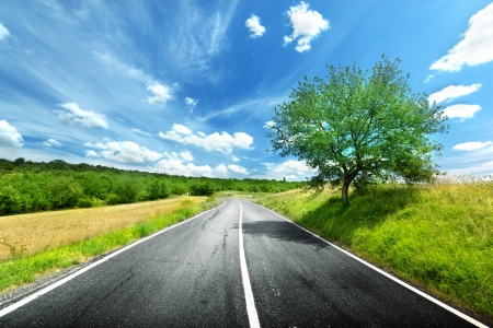 asphalt road in Tuscany Italy Stock Photo - 14839025
