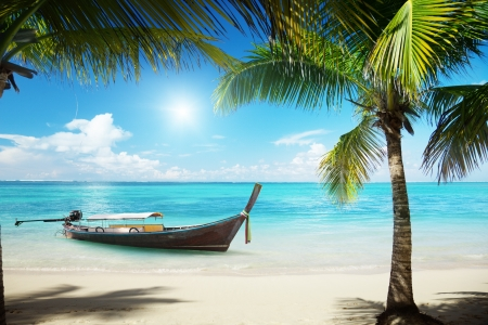 caribbean island: sea, coconut palms and boat