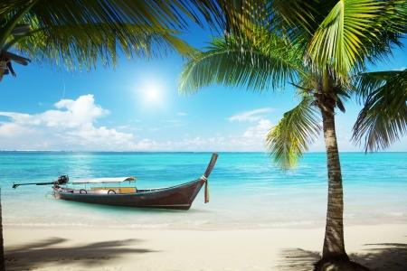 zee, kokospalmen en boot Stockfoto