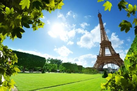 paris france: Eiffel tower in Paris, France