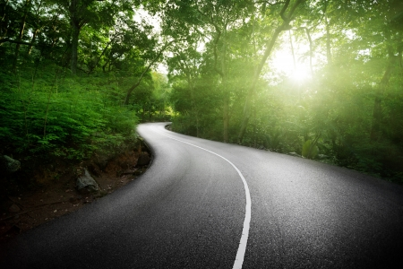 empty road: empty road in jungle of Seychelles islands Stock Photo