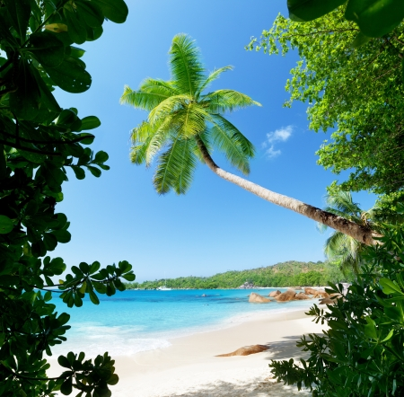 Anse Lazio beach on Praslin island in Seychelles  Stock Photo - 16113505