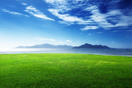 ladigue: field of grass and sea in sunset time, Seychelles, LaDigue island