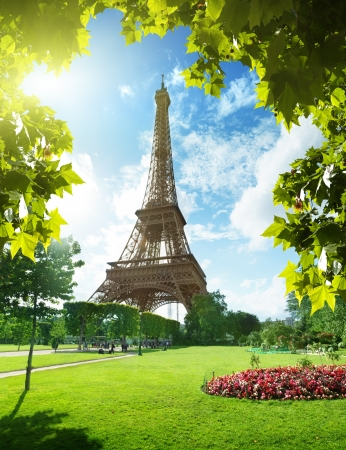 Eiffel tower in Paris, France Stock Photo - 16214977