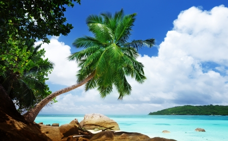 beach on Mahe island in Seychelles  photo