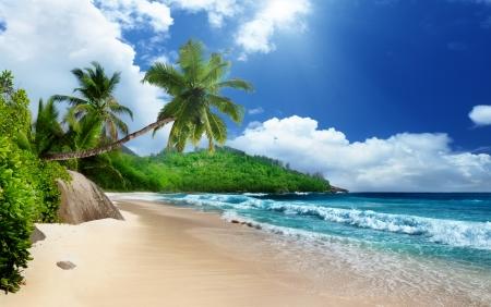 ビーチのマヘ島、セーシェル 写真素材