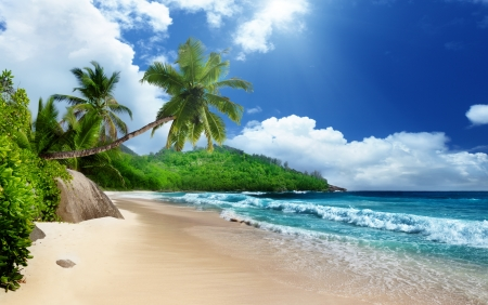 Strand op Mahe, Seychellen Stockfoto - 16504186