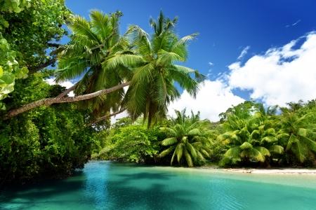 blue lagoon: lago e palme, Mahe Island, Seychelles Archivio Fotografico