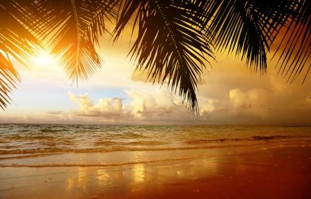 Sonnenuntergang am Strand von caribbean sea Standard-Bild