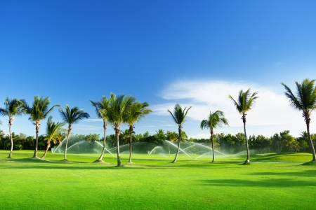 sprinklers: Irrigation golf course in Dominican republic