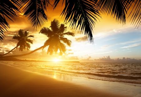 카리브 해의 해변에서 일몰