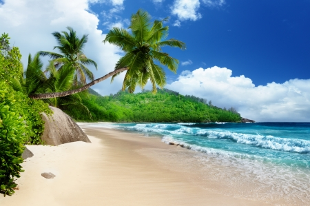 beach at Mahe island,  Seychelles photo