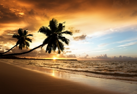 sunset on the beach of caribbean sea Stock Photo - 16991958