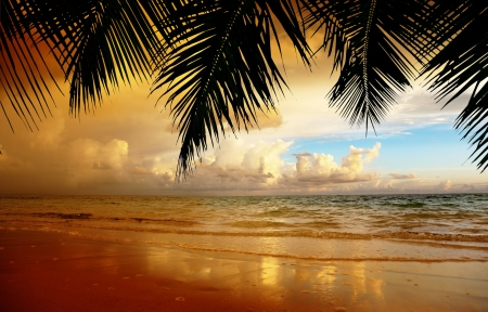 sunset on the beach of caribbean sea Stock Photo - 16991957