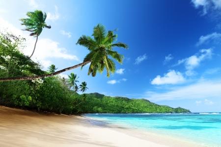 seychelles: beach in sunset time on Mahe island in Seychelles Stock Photo