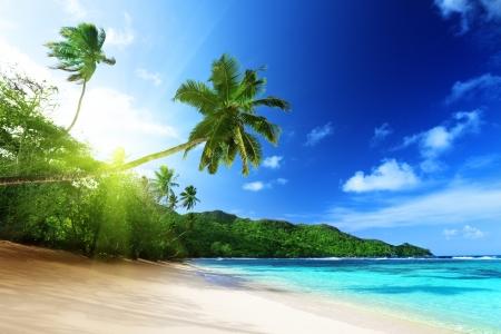 puesta de sol: playa en la puesta del sol en la isla Mahe en las Seychelles