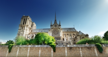 Notre Dame  Paris, France  Stock Photo - 17411844