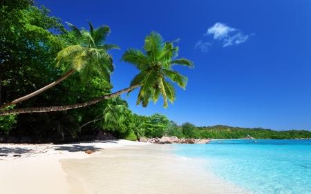 Anse Lazio beach at Praslin island, Seychelles  Stock Photo - 17411849