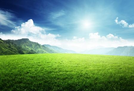 landscape: field of grass in  mountain