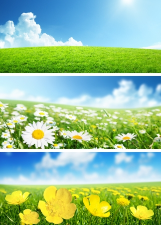 banners of spring flowers and grass Stock Photo - 17477400