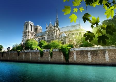 seine: Notre Dame Parijs, Frankrijk Stockfoto