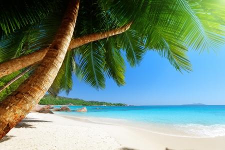 anse: Anse Lazio beach at Praslin island, Seychelles  Stock Photo