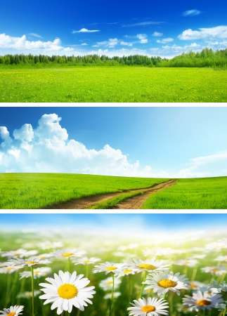 meadow: banners of spring fields and flowers Stock Photo